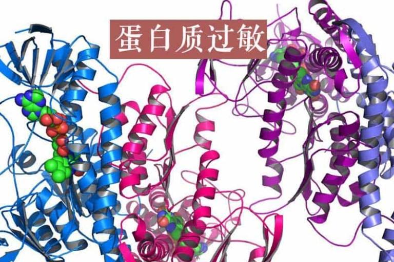 【燕窝过敏】蛋白质过敏是怎么样的一种体验?什么人不能吃燕窝?