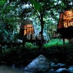 【马来西亚燕窝踩点】沙巴婆罗洲雨林的拐角处