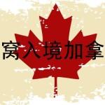 【燕窝上飞机】燕窝能带到加拿大吗,可能会上海关黑名单