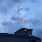【燕屋天井】燕屋高度是否讲究?金丝燕飞进开口如何设计?