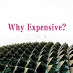 燕窝为什么那么贵?燕窝生产过程都经历了哪些成本?