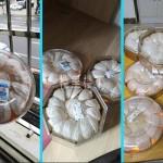 【燕窝代打包】我们可以提供在中国按需求处理燕窝散装代包代发的相关服务